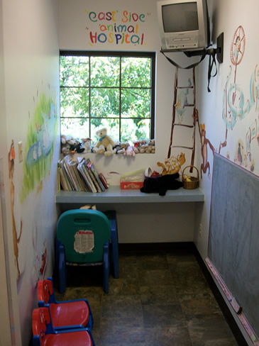 Eastside Animal Hospital Kids Area
